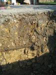 2. le sol calcaire qui domine dans la région
